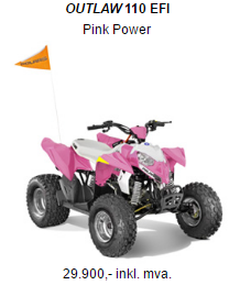 OUTLAW 110 EFI (Pink)